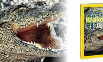 Krokodili - čudesan svijet životinja