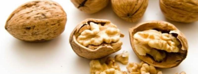9 razloga zašto trebate jesti orahe